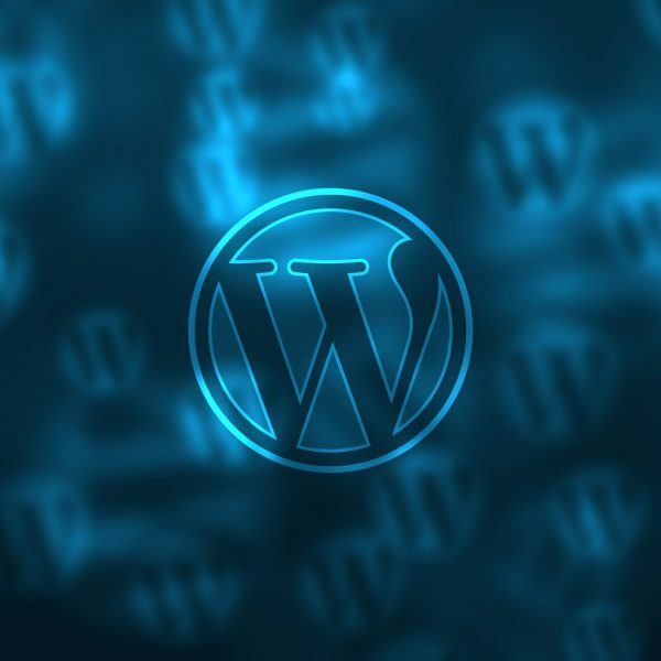 So verwendest du den WordPress-Auszug als individuelle Meta-Description