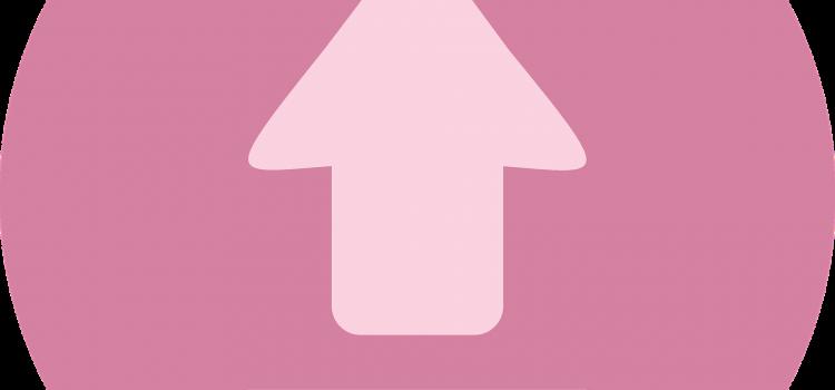 rundum.digital | blog - WordPress-Import schlägt fehl – gelöst!